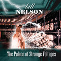The Palace Of Strange Voltages