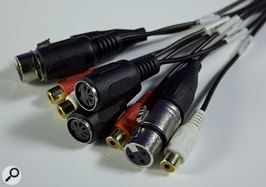 The breakout cable with MIDI, RCA Phono and XLR connectors.