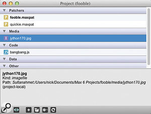 The Project file collects, tracks and manages the files associated with a Max project.