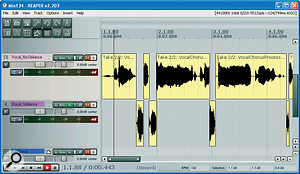 Chopping out the 'esses' from a vocal part in order to EQ them without affecting the rest of the vocal.