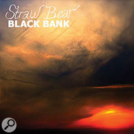 Playback: Straw Bear artwork.