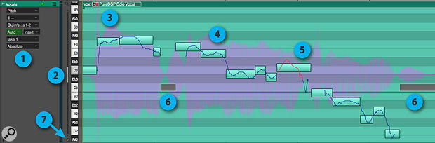 Screen2: In Absolute pitch mode, each segment represents asung note. The thin line represents actual detected pitch. Grey bars represent unpitched material, such as sibilants and breaths. You can see the pitch edit made in screen 1 as the red portion of the line.