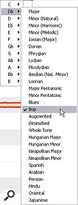 By default, you edit note pitches in Melodyne Editor with reference to an equal‑tempered chromatic pitch grid, but there are numerous other scale‑based options that can speed up editing in areal musical context.