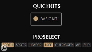 When preparing to download the individual mic positions you can select 'Basic Kit' to download the Spot 1 and Decca Tree positions, or make your own selection from the 'Pro Select' list.