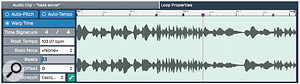 You can engage Warp Time for a  selected audio clip within the Properties panel and then add and edit Warp Points. The grey anchors are all Warp Points, and the purple anchor is the currently selected Warp Point.