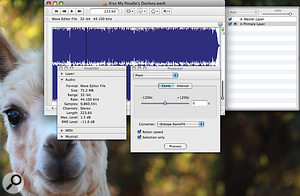 Wave Editor's main waveform display, with layer control in apop‑out tab, and Inspector and Processor windows. Other useful Processor options include Normalise, Dither and Remove DC Offset. The alpaca is not included.