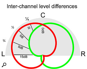 Level differences in each mic in a  coincident X-Y array, due to the position of the sound source in relation to the array, dictate where in the stereo sound stage the source will appear to be.