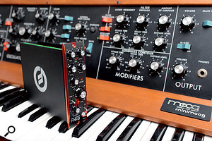 The Ladder filter 500 series module and its older cousin, the much‑loved Minimoog Model D.