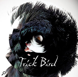Mix Rescue: Trick Bird.