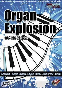 Nine Volt Audio | Organ Explosion