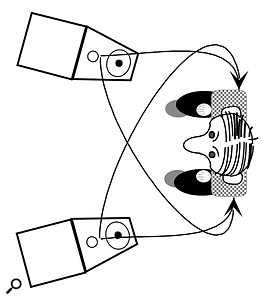 The basic physics underpinning Blumlein's theory: the sound from each speaker takes longer to reach one ear than it does the other, due to distance and the shadowing effect of the head.
